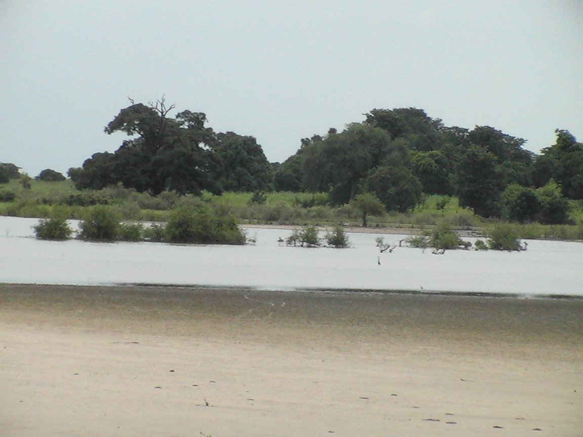 Sortie de Sokone dans la region de Fatick